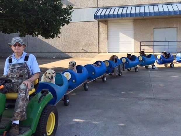 Δείτε την καταπληκτική ιδέα που είχε αυτός ο άντρας για να βγάζει τα σκυλιά του βόλτα! (video + photos)