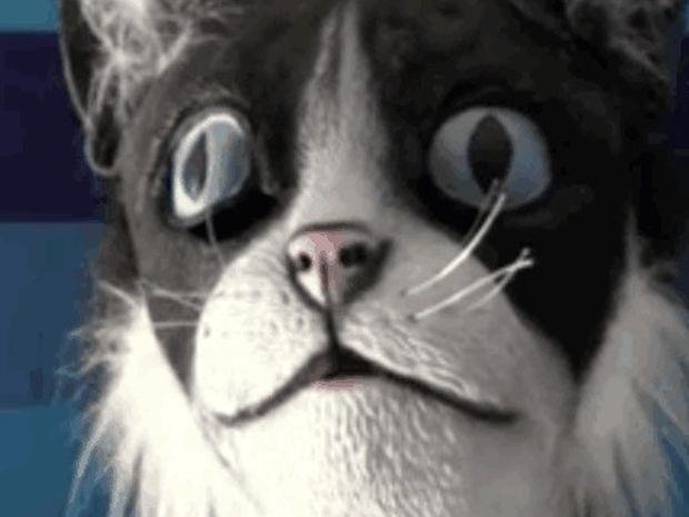 Τρελό γέλιο: Τρόμαξε άθελα του τις γάτες του με μια… μάσκα γάτας!