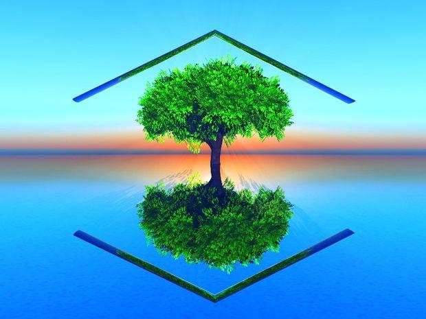 Ποιο ζώδιο είναι eco friendly και ποιο θέλει ακόμα δουλίτσα;
