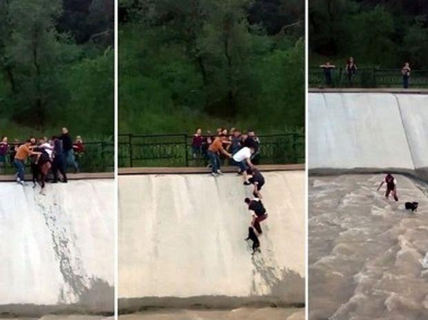 Συγκλονιστικό! Πέντε θαρραλέοι φίλοι σώζουν ένα κουτάβι από τα ορμητικά νερά! (video)