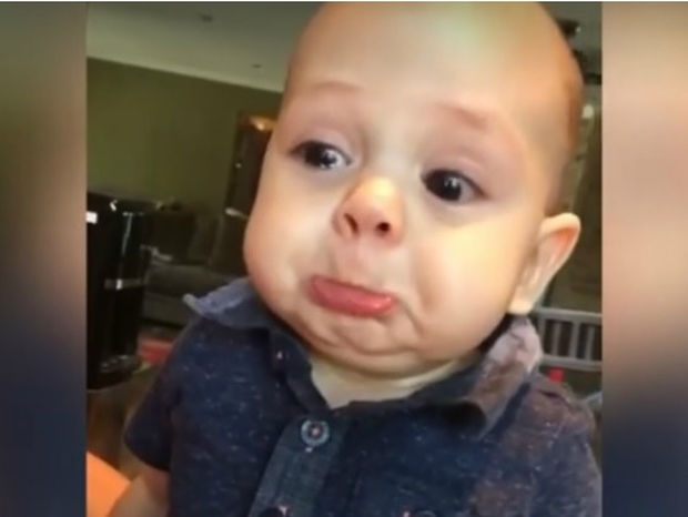 Η αντίδραση του μπεμπάκου στο κλαρινέτο θα σας μείνει αξέχαστη! (video)