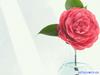 Ζώδια Σήμερα 20/7: Εντάσεις και συναισθηματικές διακυμάνσεις