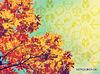 Εβδομαδιαίες προβλέψεις για όλα τα ζώδια από 04/11 έως 10/11