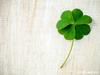 Ζώδια Σήμερα 26/11: Αν θες περισσότερη τύχη, κυνήγησε περισσότερες ευκαιρίες