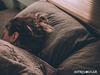 Πόσες ώρες ύπνου χρειάζεσαι σύμφωνα με το ζώδιό σου;