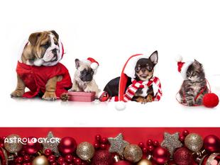 Με αυτά τα 4 ζώδια ΔΕΝ θέλεις να περάσεις τα Χριστούγεννα