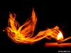 Ονειροκρίτης: Είδες στο όνειρό σου φωτιά;